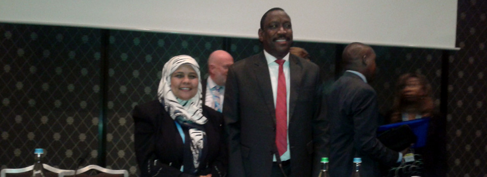 The session was chaired by Sudan's Minister of Health